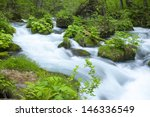stream in green forest | Shutterstock . vector #146336549