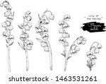 sketch floral botany collection.... | Shutterstock .eps vector #1463531261