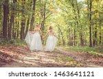 Two Little Girls In Dress...