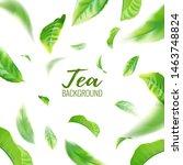 realistic green tea leaves... | Shutterstock .eps vector #1463748824