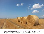 Round Straw Bales Lie On The...