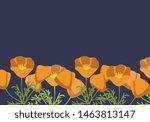 California Poppy Simple Vector...