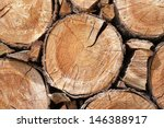 close up of cut tree trunk | Shutterstock . vector #146388917