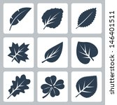 vector tree leaves icons set | Shutterstock .eps vector #146401511