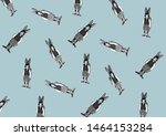 Stock photo black and white rabbits isolated on blue background pins and brooches rabbit on white background 1464153284
