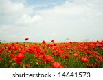 An Image Of A Field With Red...