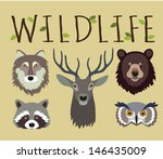 animal,background,bear,biology,carnivore,cartoon,character,collection,cute,deer,design,eco,ecology,face,foliage