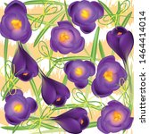 crocuses. crocus. beautiful... | Shutterstock .eps vector #1464414014