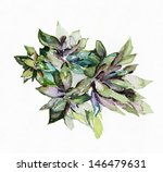 succulents | Shutterstock . vector #146479631