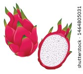 dragon fruit  whole fruit and... | Shutterstock .eps vector #1464805031