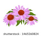 purple flowers and green leaves.... | Shutterstock .eps vector #1465260824