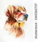 Watercolor Portrait Of A Golden ...