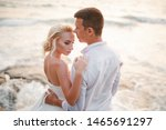wedding couple. beautiful bride ... | Shutterstock . vector #1465691297