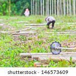 saw to cut wood sawing machine... | Shutterstock . vector #146573609