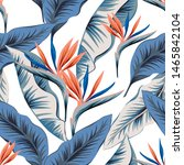tropical strelitzia flowers ... | Shutterstock .eps vector #1465842104