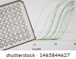 Research Method Real Time Pcr....