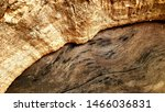 image of wood texture and bark   Shutterstock . vector #1466036831