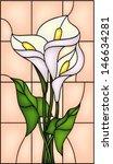 arquitectura,fondo,hermosa,belleza,botánica,ramo,manojo,calla,cementerio,color,colorido,decoración,campo,flora,floral