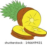 fresh pineapple with slices... | Shutterstock .eps vector #146649431