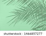 Gray Shadow Of Natural Palm...