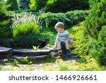 A Little Boy Plays In A...