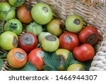 A Basket Showing Tomatoes...