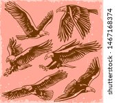 vector set of eagles flying and ...