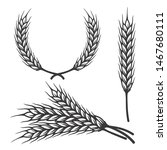 Different Angles Barley Spike...