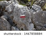 right way sign in lycian way....   Shutterstock . vector #1467858884