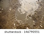 Puddle And Mud With Tire Track...