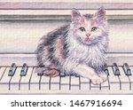 Cute Fluffy Kitten On The Pian...