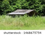 Abandoned Wooden Shed With...