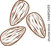 almonds | Shutterstock .eps vector #146892455