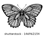butterfly  graphic style  hand...
