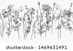 ink wildflowers hand drawn... | Shutterstock . vector #1469631491