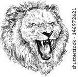 hand drawn lion head | Shutterstock . vector #146972621