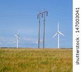 barley field in the wind ... | Shutterstock . vector #147003041
