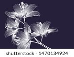 Stock vector abstract hand drawn floral pattern with lily flowers vector illustration element for design 1470134924