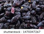 far eastern forest berry....   Shutterstock . vector #1470347267