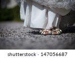 wedding shoes   Shutterstock . vector #147056687