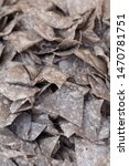 mexican nachos multicolor salty ...   Shutterstock . vector #1470781751