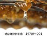 honey drop trickling down | Shutterstock . vector #147094001