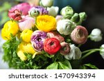 beautiful ranunculus bouquet in ... | Shutterstock . vector #1470943394