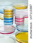 petri dishes with colored fluid ... | Shutterstock . vector #147113387