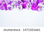 Pansy Flower Bouquet. Purple...