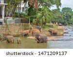 Mawanella  Sri Lanka   July 9 ...