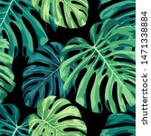monstera tropical plant  ... | Shutterstock .eps vector #1471338884