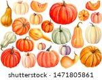 Autumn Set Of Pumpkins On An...
