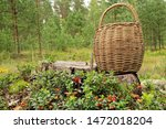 Wicker Basket And Lingonberry ...