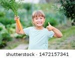 little girl picking carrots in... | Shutterstock . vector #1472157341